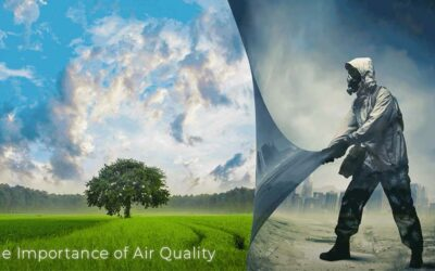 """""""You Are What You Breathe"""" – The Importance of Air Quality"""